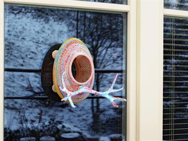 Printednest colourful nest