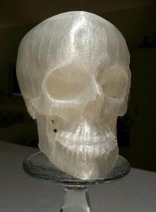 3D_Printed_FDM Skull