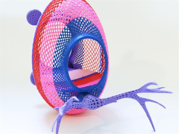 printed nest birdʻs nest